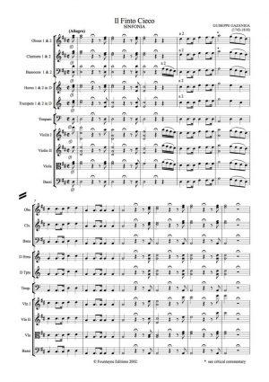 Gazzaniga: Il Finto Cieco Sinfonia