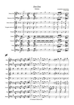 Gazzaniga: Zon Zon Sinfonia
